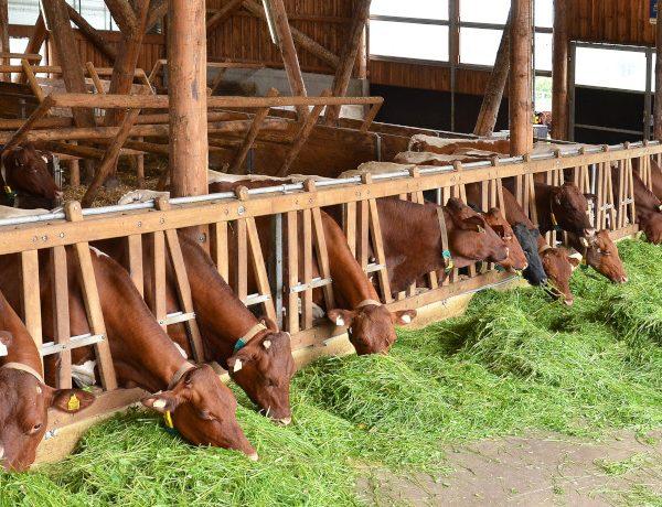 Landwirtschaftliche Fachschule Winklhof
